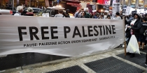 free-palestine-article-header